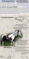 How to Draw Realistic Horses by jacamat