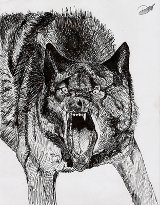 Angry Wolf by Domisea