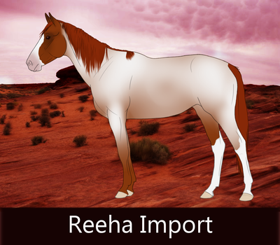 023 Reeha Import by ReehaOutlaw