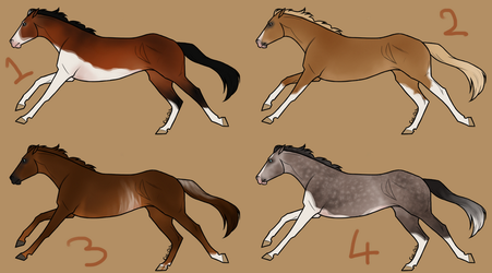 Thoroughbred adopts - CLOSED by SlightlyMadStables