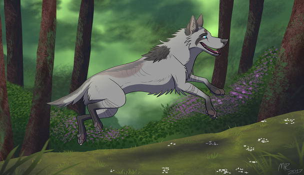 Gray in the Wild by MightyRaptor