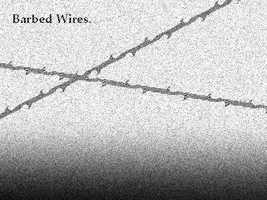 Barbed Wires by another-default