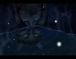 Leafpaw at the Moonpool by heylorlass