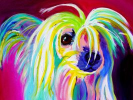 Chinese Crested by dawgart