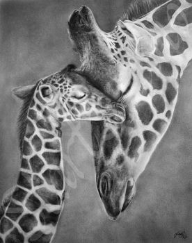 Mothers Love by JamiePickering
