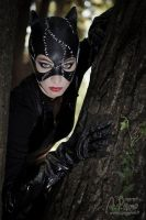 Catwoman Cosplay by TiddeInDisguise