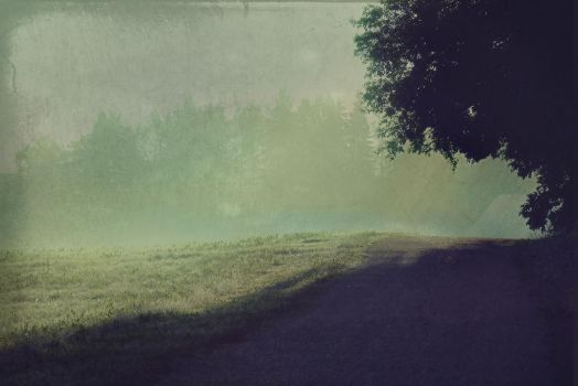 Early Morning Light by Amalus