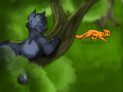 Bluestar and firepaw commision by Sno-wy