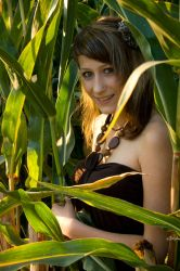 In the cornfield by eqL