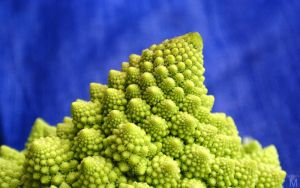 Romanesco by Jasper-M