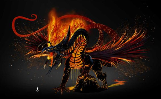 Dragon of fire by Raro666