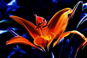 Glowing Beauty fractalius version by arcadian7
