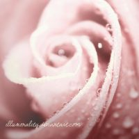 your delicate ways II by illusionality