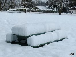 Snow Covered Bench by wolfwings1