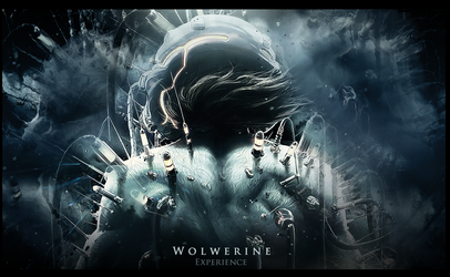 Wall Wolwerine 'Experience' by Shun-arts