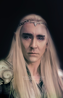 Thranduil II by LindaMarieAnson