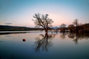 Reflections by Chris-Lamprianidis