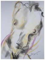 Pastel Nude sketch no.2 by red-lights