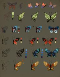 How To Draw Butterfly by jiuge
