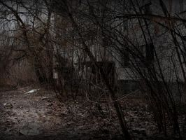 Theme of the GSC for STALKER CoP - Street Pripyat by Bobrbor