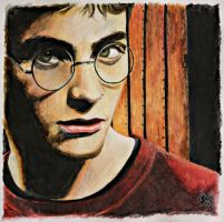 harry potter by gunneos