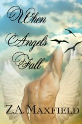 When Angels Fall by CemeteryWinter