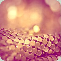 Gold by jacqui-kate