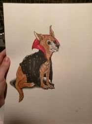Dog in a vampire costume.  by R0seMW