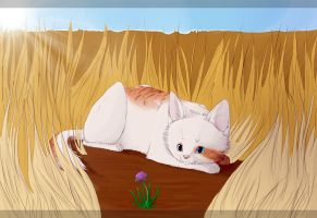 :p-comm: Hiding in the fields by PawzMallina