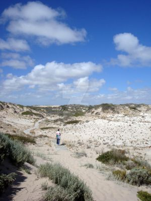 The Coorong by flerin