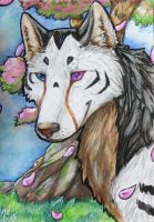 Almost paradise- ACEO by rohirrimshadow