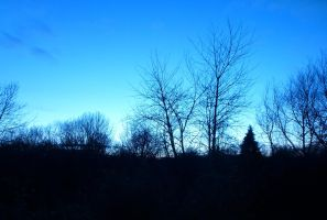 Dusk,Valentine's Day from Bedroom Window for Flori by SrTw