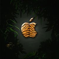 iPad Wallpaper - Tiger by LaggyDogg