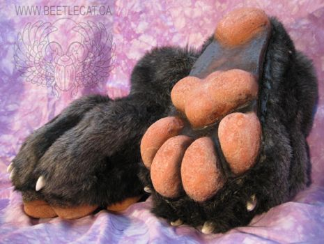 Paws for the Feet by Beetlecat