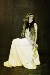 Willow by paula2206