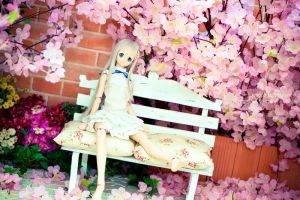 cherry blossom viewing. 2 by oshkyballs