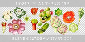 110819_Plant15_by_eleven by eleven1627