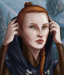 The Warden-Commander by Thursday-Rose