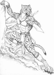 Tambako Leopard fighter by WolfLSI