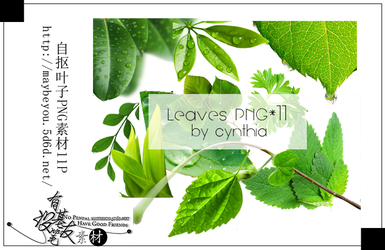 Leaves Png by CynthiaY