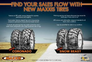 Feb 2013 PSB Tire Ad by rsholtis