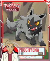 Pokemon - Poochyena