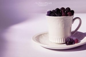 Cup of Berry by aninyosaloh
