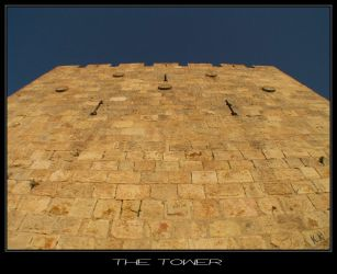 The Tower by israel