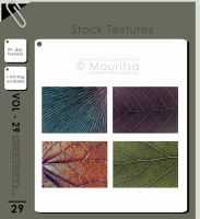 Texture - Vol 29 by iMouritsa