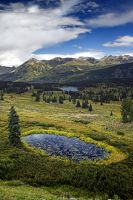 Lilly Pond at Molas Pass by jerryhazard