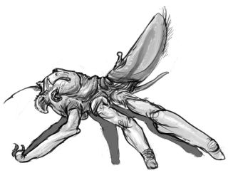 Insect/spider like predator by Iopac