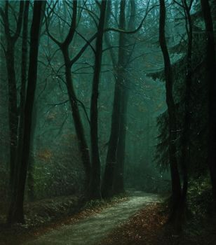 Misty Forest in Autumn by MHandt