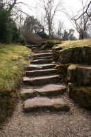 Steps by wintersmagicstock