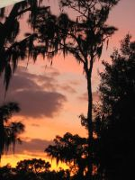 Colorful Florida Sunset 2 by Larah88